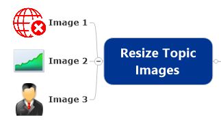 Resize Topic Images Command Selected Topics After Resize