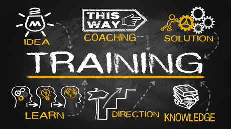 MIVAP Training